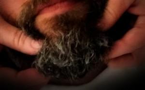 beard1edit